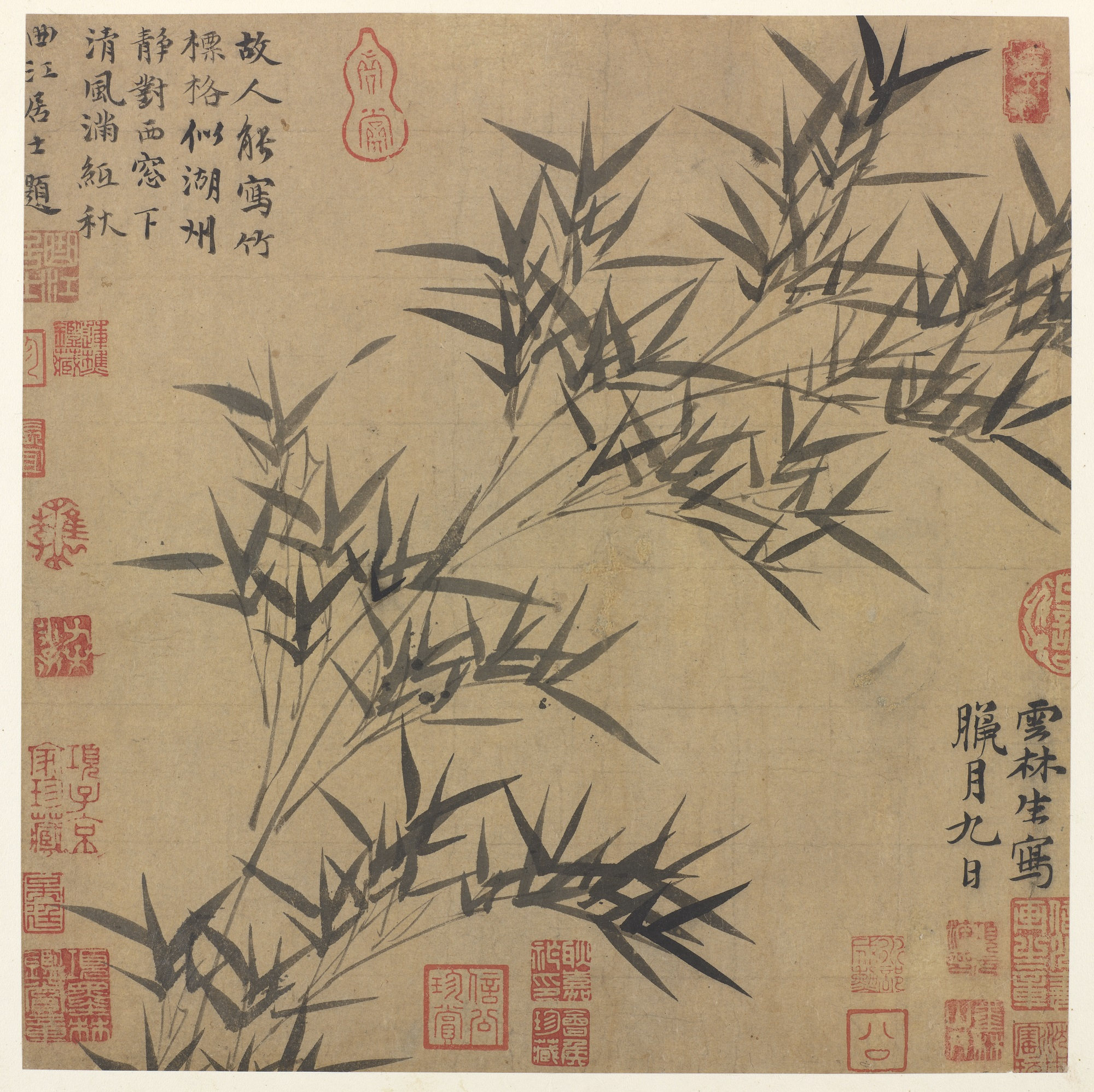a bamboo branch against a plain background with chinese characters